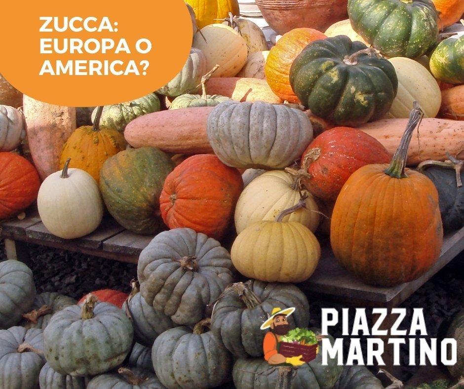 Zucca: Europa o America?